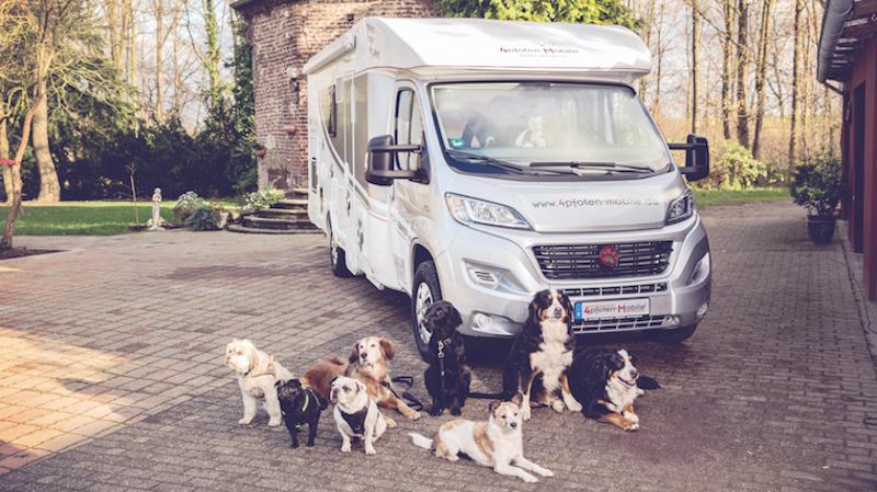 DogLiner Wohnmobil für Hundebesitzer